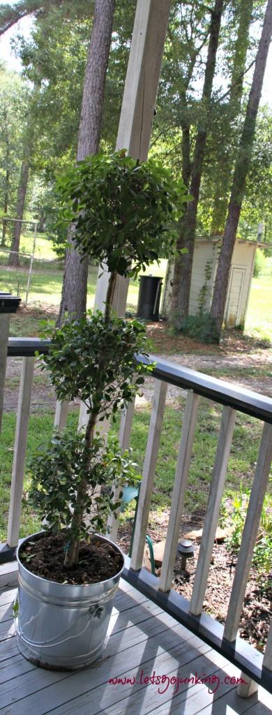 Front Porch 15