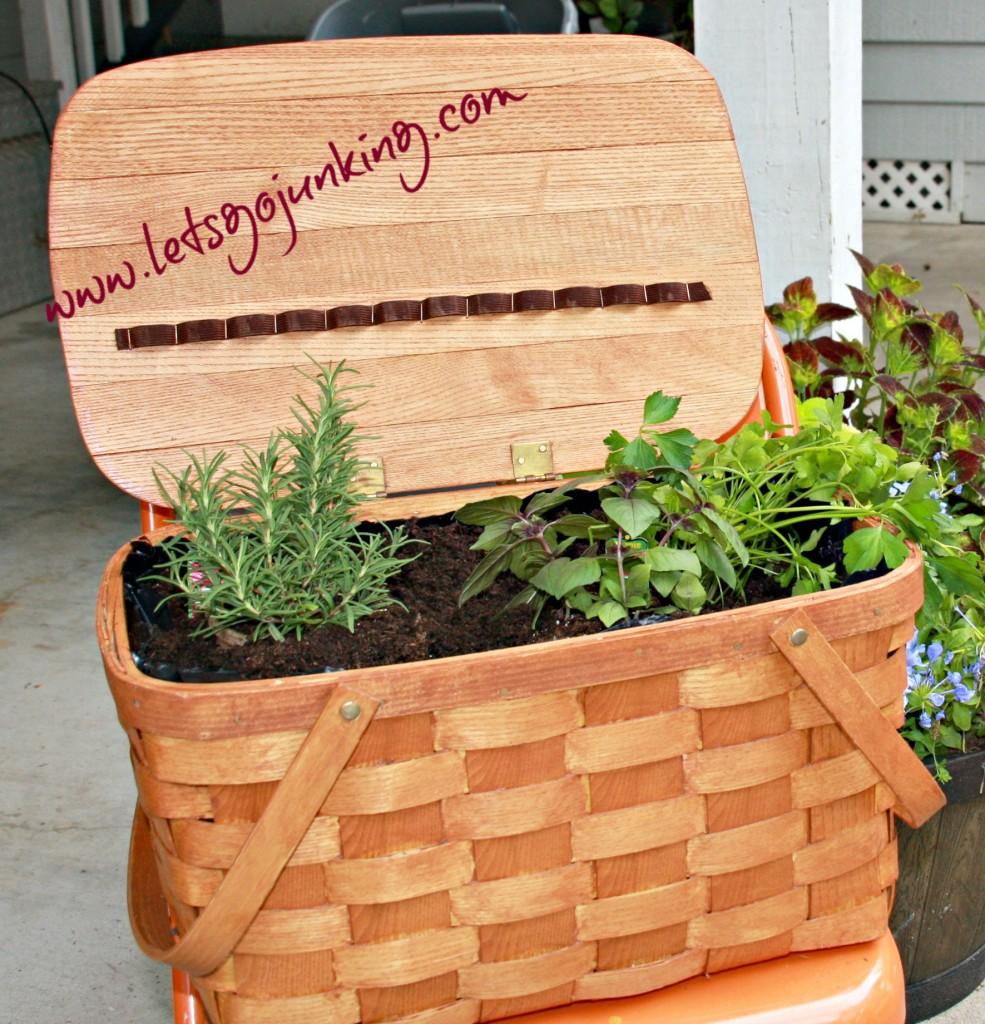 planted basket pic wm